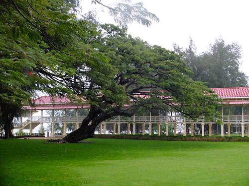 「愛與希望之宮」有个長廊, 長廊的盡頭就是海灘, 周围都是绿油油的草地和大树 The green space is a major characteristics of the palace