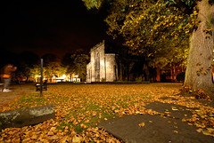 Autumn Grave Yard (ChrisHepburn) Tags: park longexposure autumn trees wild brown macro tree green church nature grave grass leaves night yard mushrooms town leaf nikon photographer time wildlife sigma d200 1020mm stmarys stafford