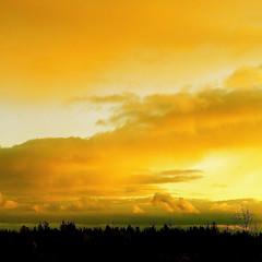 Sun From The West!/Soleil de l'ouest!