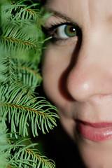 365-352 Pine'ng for you :) (TXAlleKat) Tags: eye 50mm nikon armslength pineneedles sp 50mmf18d 365days d80 sometimesicrackmyselfup cantfindmyremotewhydotheymakethosesosmall