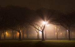 Meadows Walk (davydubbit) Tags: mist fog scotland edinburgh streetlights themeadows renroc