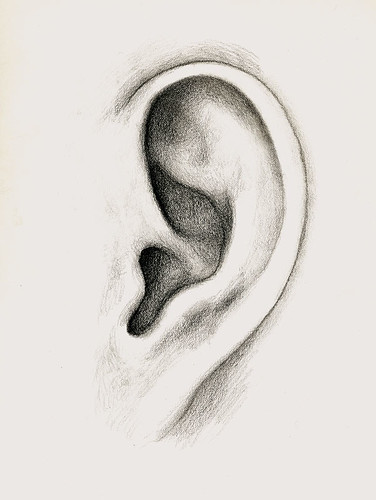 sml ear (by Gregory Hull)