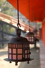 lanterns and the bridge (marcella bona) Tags: bridge orange japan temple gimp hiroshima lantern shinto giappone itsukushima