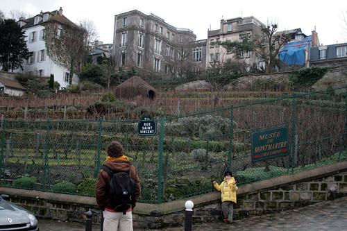 Montеmartre Wineyard