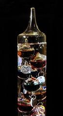 Galileo thermometer (Erasmus T) Tags: glass colours physics temperature liquid density 1001 galileothermometer galileogalilei