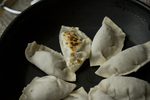 Searing the pot stickers