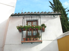 Sville, quartier Santa Cruz (mhp75) Tags: espagne sville andalousie