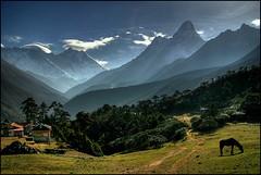 Tengboche, Himalayas (mselam) Tags: nepal geotagged everest himalayas amadablam tengboche galope mywinners abigfave holidaysvacanzeurlaub alemdagqualityonlyclub damniwishidtakenthat fickr