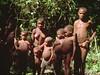 Congo Ituri Pyg