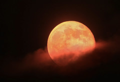 Out of the Smoke (4Durt) Tags: orange night smoke fullmoon fires redmoon murrieta inlandempire riversidecounty californiafire huntersmoon curttoumanian photodomino504