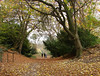 Autumn stroll (Mr Grimesdale) Tags: park autumn trees leaves sony wirral merseyside mrgrimsdale stevewallace birkenheadpark dsch2 challengeyouwinner europeancapitalofculture2008 photofaceoffwinner pfosilver mrgrimesdale grimesdale