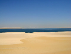 Wadi Al Rayan-desert and Oasis (Queen Tiye) Tags: hot nature sand desert egypt oasis simplicity inspire whitesand wadi fayoum wadialrayan fayom elfayom diamondclassphotographer flickrdiamond ysplix prinzesabg