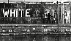 White And Rose (edouardv66) Tags: bw white man water rose wall river poster switzerland blackwhite nikon streetlight suisse geneva bank nb d200 genève 18200 vr noirblanc rhone billsticking graffies
