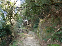 洲本城への道その1