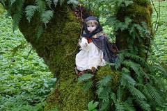 DSC01396.jpgdollpark (portugita_norton) Tags: park trees fern washington doll livingdoll bucoda