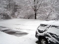 Snow 32808