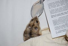 Hamlet yoghurt and the Private Eye