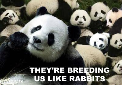 Breeding Artificially