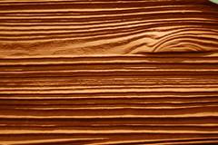 Wood grain (árticotropical) Tags: canada macro texture closeup vancouver rockymountains