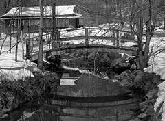 Reflection (IgorKole) Tags: park old city bridge winter shadow blackandwhite bw white snow toronto canada black cold color colour reflection tree art ice nature water creek forest wow river landscape outside 1 spring amazing nice woods bravo stream artist highpark top great dream scenic wb best shore freeze shade brook fabulous chily e500 naturesfinest outdors anawesomeshot hccity