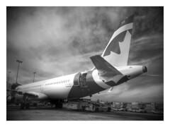 Maple Leaf Airways, LLC (noel tee) Tags: