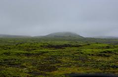 Fog at Hellisheiði