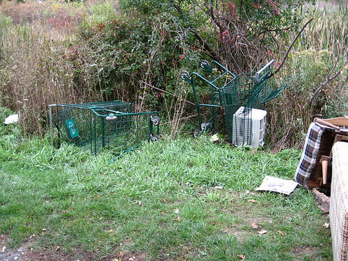 More stolen shopping carts thrown around (Kingston, Ontario) by believeandmakeadifference.
