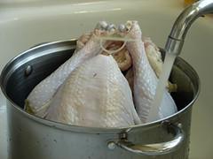 thawing_turkey