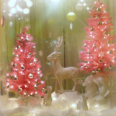 pink Christmas (phoebe reid) Tags: christmas pink decorations white holiday tree window virginia richmond deer va storefront northside florist bellevue christmastime 30holidays thesetreeslooksmallinthispicturebuttheywereatleast4or5feet