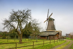 Dutch Windmill (siebe ) Tags: holland windmill dutch nederland thenetherlands molen zevenaar dehoop hollandstock