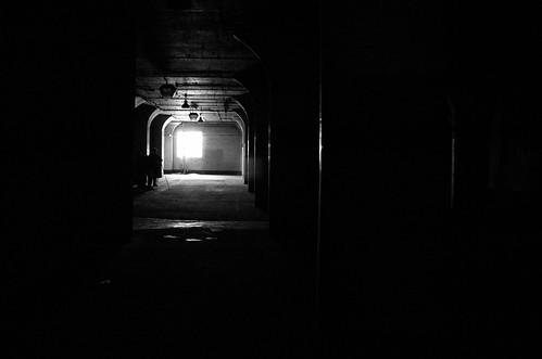Musings in the Dark
