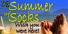 summerofsox08