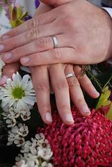 rings (Helen Boronia McHugh) Tags: wedding red white alex silver hands ring astrid daisy fingernails waratah griffith