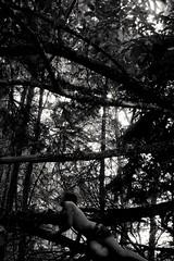 Nature. (Semi)Nude body and trees. (AloysiaVanTodd) Tags: