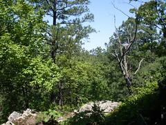 McGee Wildlife Reserve, Oklahoma