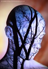 Inner structure (paul indigo) Tags: tree surreal projection 2b butoh spirti 10faves diamondclassphotographer paulindigo