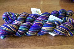 Claudia Handpainted Yarn