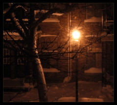 PublicLight in a Snow Storm