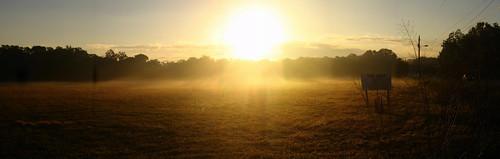 Morning sun near Bloomingdale, Florida, USA