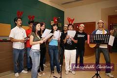 indescribable00014 (delephant.blogspot.com) Tags: christmas indescribable