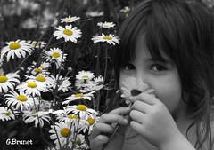 Tania... (Guylaine2007) Tags: portrait eye nature fleur girl jaune yeux teen enfant fille regard photoquebec lysdor