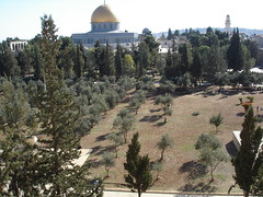Jerusalem, Israel (The Temple Mount)