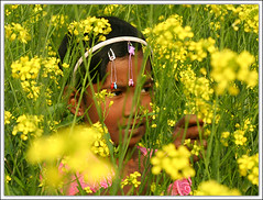 With your color..... [..Chuadanga, Bangladesh..] (Catch the dream) Tags: portrait flower color green girl field yellow rural children wonder village child bongo vivid mustard inside pick hue bengal bangladesh bangla bengali bangladeshi bangali golddragon anawesomeshot blurribbonwinner catchthedream gettyimagesbangladeshq2