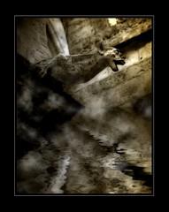 Gargouille 2 (Christian Bachellier) Tags: reflection photoshop nikon reflet gargouille spia retouche falsification