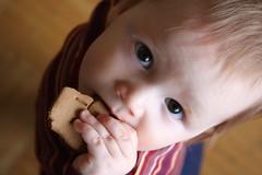 Gingerbread Train Derailment