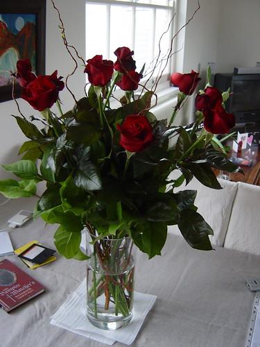 valentine roses 002