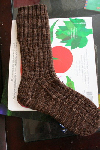 Shibui Knits 3x1 Garter Rib Socks in Bark