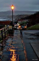 Raining down (~Glen B~) Tags: road uk england wet robin rain reflections lights bay coast britain dusk path yorkshire north down hoods bbok