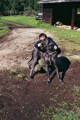 Bruce's found film, Karoo Roadtrip, 2001 (mallix) Tags: road camera 2001 old trip bridge blue friends red wild summer vacation dog guy film me forest river bread southafrica fun found outdoors big bush outdoor hiking acid bruce memories roadtrip andrew greatdane memory huge dane worldcup pure munch stef tripping 2010 knysna karoo owlhouse harkerville nieubethesda soccerworldcup worldcup2010 mallix fifa2010