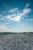 From the archive: December 2010. (elkarrde) Tags: nature landscape pentax pentaxk20d k20d pentaxart justpentax camera:model=k20d camera:brand=pentax camera:mount=kaf3 camera:format=apsc croatia location:country=croatia jastrebarskocounty lens:brand=pentax lens:format=apsc lens:mount=kaf2 snow winter sky clouds cold sunny clearskies december 2010 winter2010 december2010 frozen sun field 1645 da16454 da1645 smcpentaxda1645mm14edal lens:maxaperture=4 lens:focallength=1645mm lens:model=smcpentaxda141645mmedal